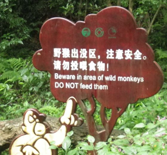 Monkey caution